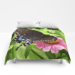 Butterfly on Pink Zinnia 2 Comforters
