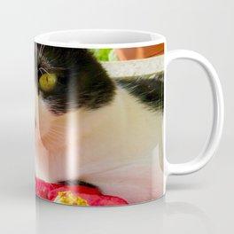 Khoshek queen of flowers Coffee Mug