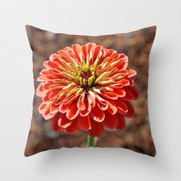 Single orange dahlia Throw Pillow