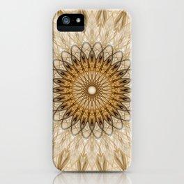 Pretty golden and beige mandala iPhone Case