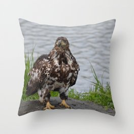 Immature Closeup Throw Pillow