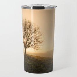 Rising sun behind a baren tree on a crisp fall or spring morning Travel Mug