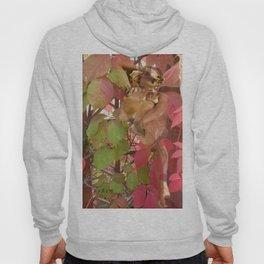 Nude in leaves Hoody