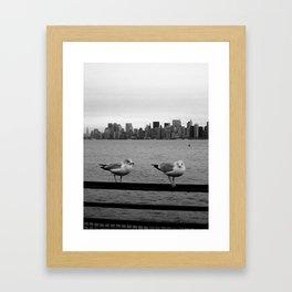 Birds of NYC Framed Art Print