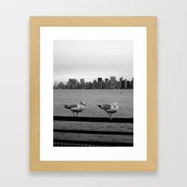 Birds of NYC Framed Art Print
