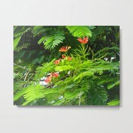 Trees and Blooms 2  Metal Print