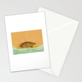 Rider - Badger Surfer Stationery Cards