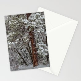 Wintertime 2 Stationery Cards