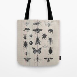 Vintage Insect Study on antique 1800's Ledger paper print Tote Bag