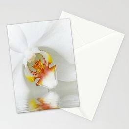 Orchid 131 Stationery Cards