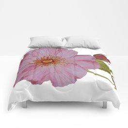 Botanical Pink Rose Watercolor Comforters