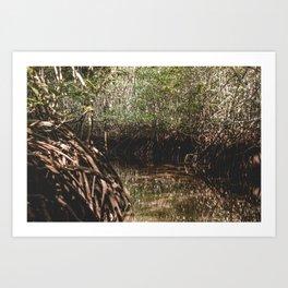 Mangrove tour in Nusa Lembogan Art Print