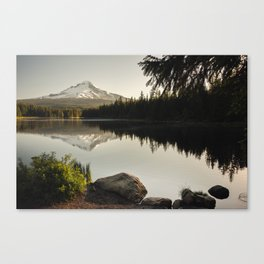 Trillium Mornings Canvas Print