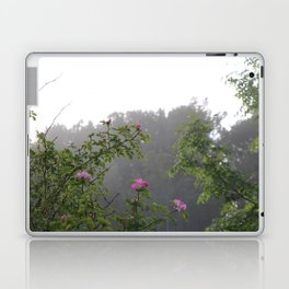 Pink Roses Photos, Wild Roses, Nature Photography, Fine art gifts Laptop & iPad Skin