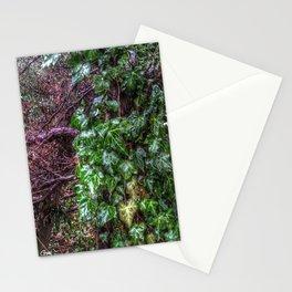 Gnarled vines & Ivy on a Misty Day Stationery Cards