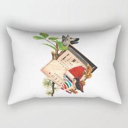 Etro Rectangular Pillow