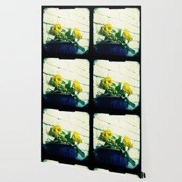 Golden flowers Wallpaper