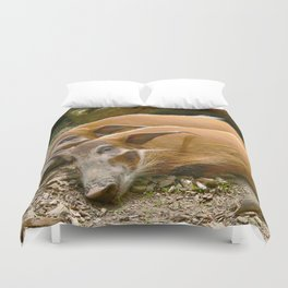 Red River Hogs taking a nap Duvet Cover