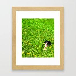 Dog in the Field Framed Art Print