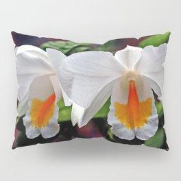Cattleya Orchid Pillow Sham