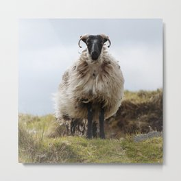 Who are ewe? Metal Print