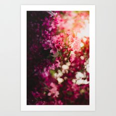 Beauty of Spring II Art Print