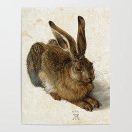 Albrecht Durer Hare Poster