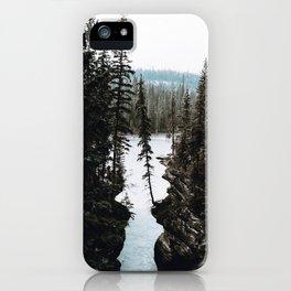 Into the Wild III iPhone Case