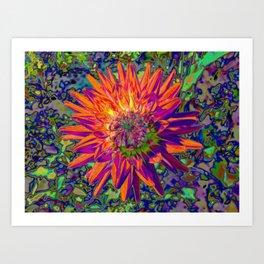 "Extreme Dahlia ""Weston Spanish Dancer"" Art Print"