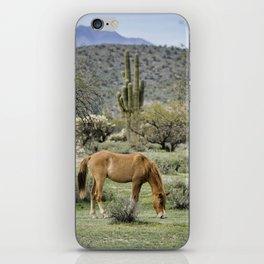 The Wild Arizona iPhone Skin