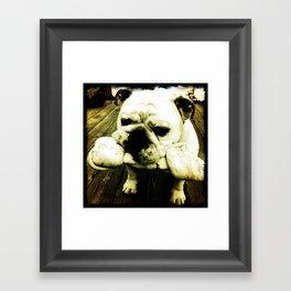 Rupert Framed Art Print