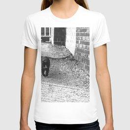 Railway Cat Greeting T-shirt