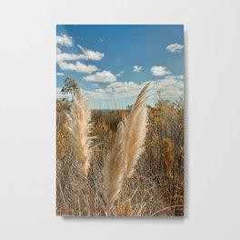 Autumn Sea Oats Metal Print