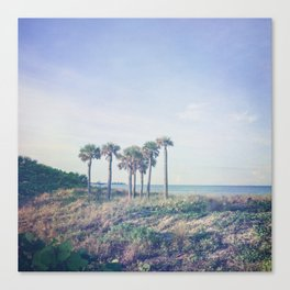 Seven Palm Trees Canvas Print