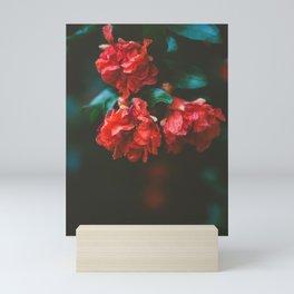Pomegranate Study, No. 2 Mini Art Print