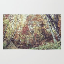 """""""Into the woods"""" Autumn wander. Rug"""