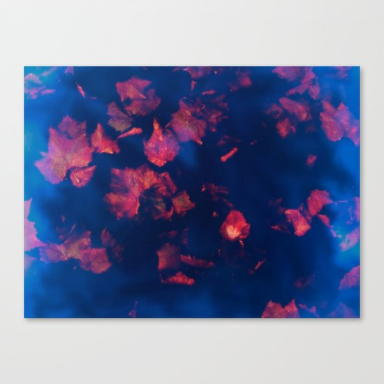 Rusty red falling leaves in dark blue water Canvas Print