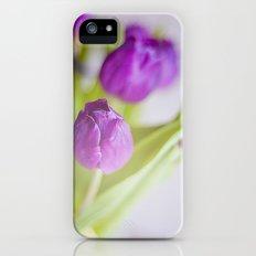 Tulipanes morados.  Slim Case iPhone (5, 5s)