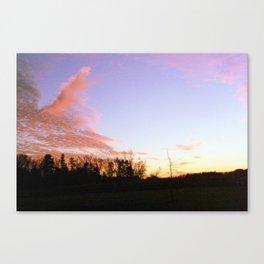 Pink Lavender Canvas Print