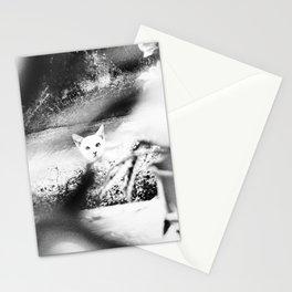 Stalked Stationery Cards