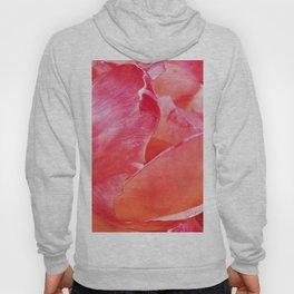 Rosebud Pink 615 Hoody