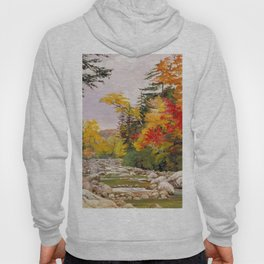Autumn tints & foliage in the White Mountains, New Hampshire landscape nature painting by Marianne North Hoody