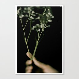 i got a flower for you Canvas Print