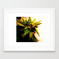plant Framed Art Prints featuring Plant by Chronic Cookie