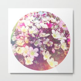 Flowers At The Chalet Metal Print