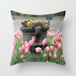 Schonbrunn Gardens Throw Pillow