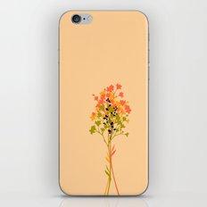 Bouquet d'automne iPhone & iPod Skin