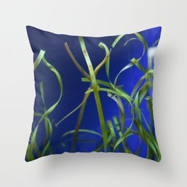 Find the Pipefish Throw Pillow