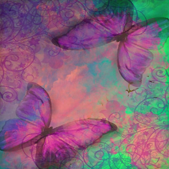 Butterfly Love Abstract Comforters