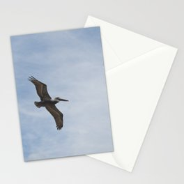 Brown Pelican - Naples, Florida Stationery Cards